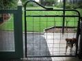 Maddison garden gate