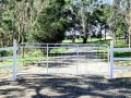 Vanessa farm mesh gate mounted on steel posts with balls caps by Farmweld