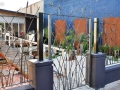 Contemporary iron gate & fence with bulrushes